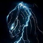 Illustration du profil de predator13000